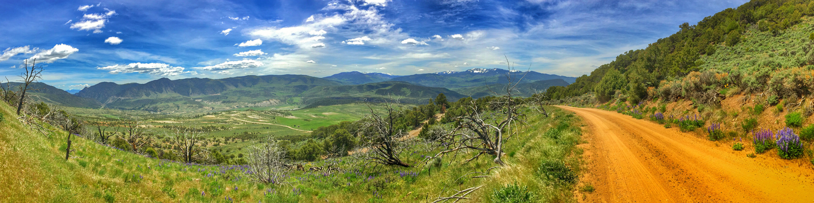 Timberline Tours - Radium State Wildlife Area