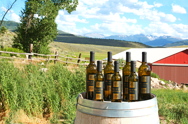 Vail Wine Tours